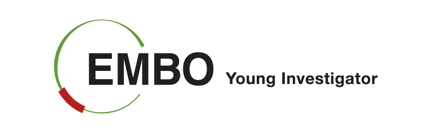 2019-09/1567414163_embo_young-investigator-copy1.png