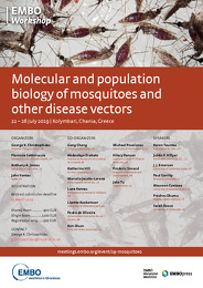 Molecular and population biology of mosquitoes and other